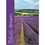 Wall Calendar - Notable Britain