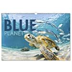 Wall Calendar - Blue Planet