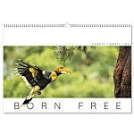 Wall Calendar - Born Free