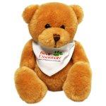 Scout Bears - Cheerful Bear