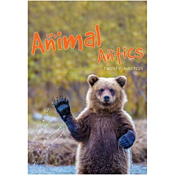 View a larger, more detailed picture of the Wall Calendar - Animal Antics