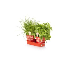 View a larger, more detailed picture of the Jamie Oliver Grow Your Own Herbs
